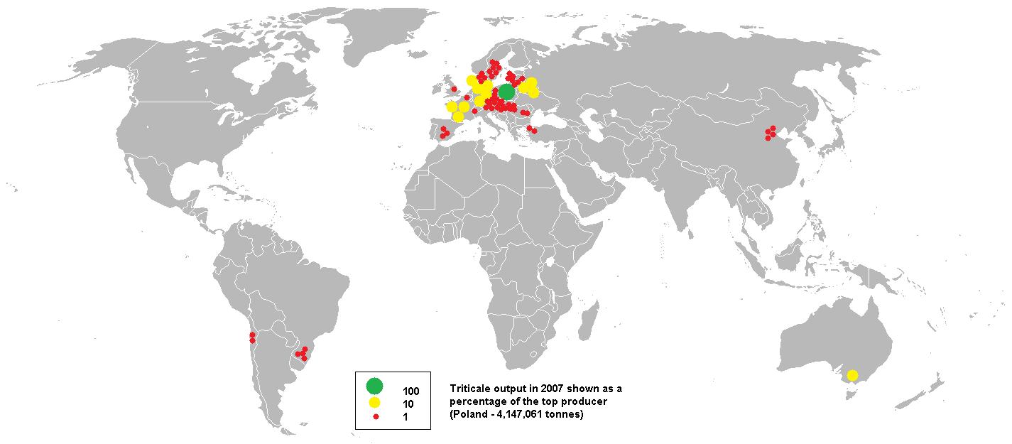Посевы тритикале в мире